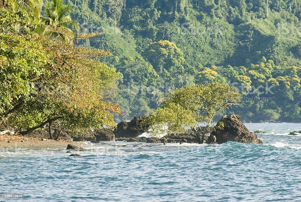 Wild Costa Rica beach royalty-free stock photo