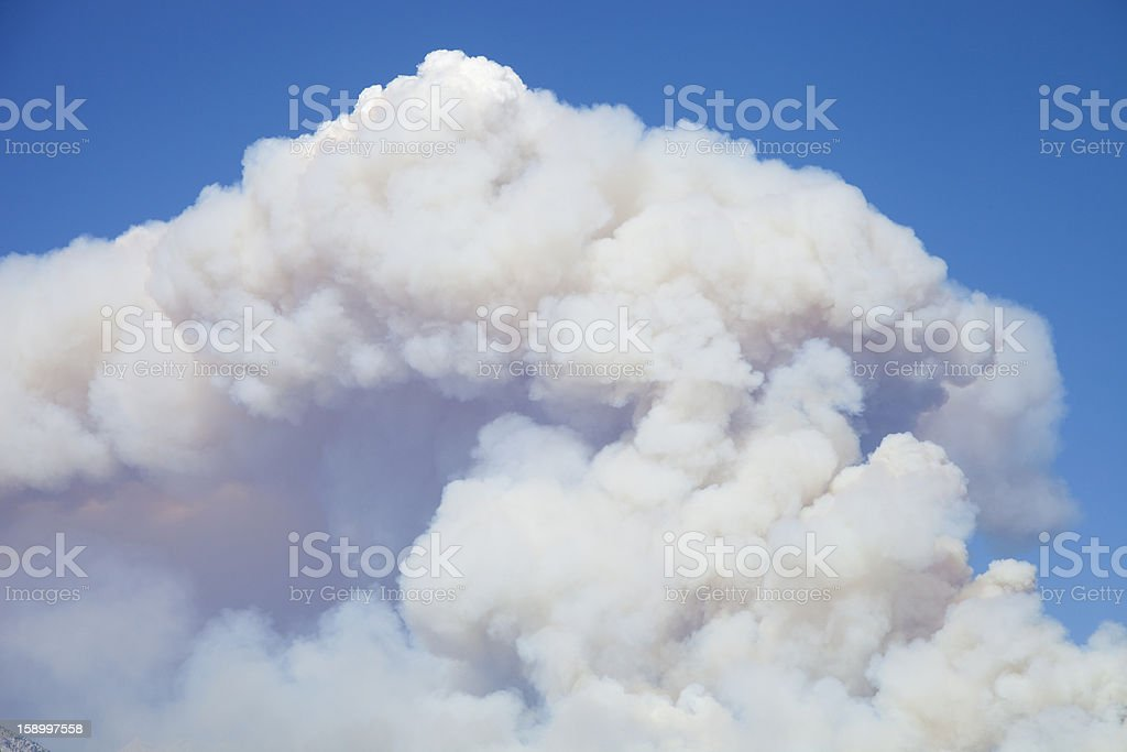 Wild Fire royalty-free stock photo