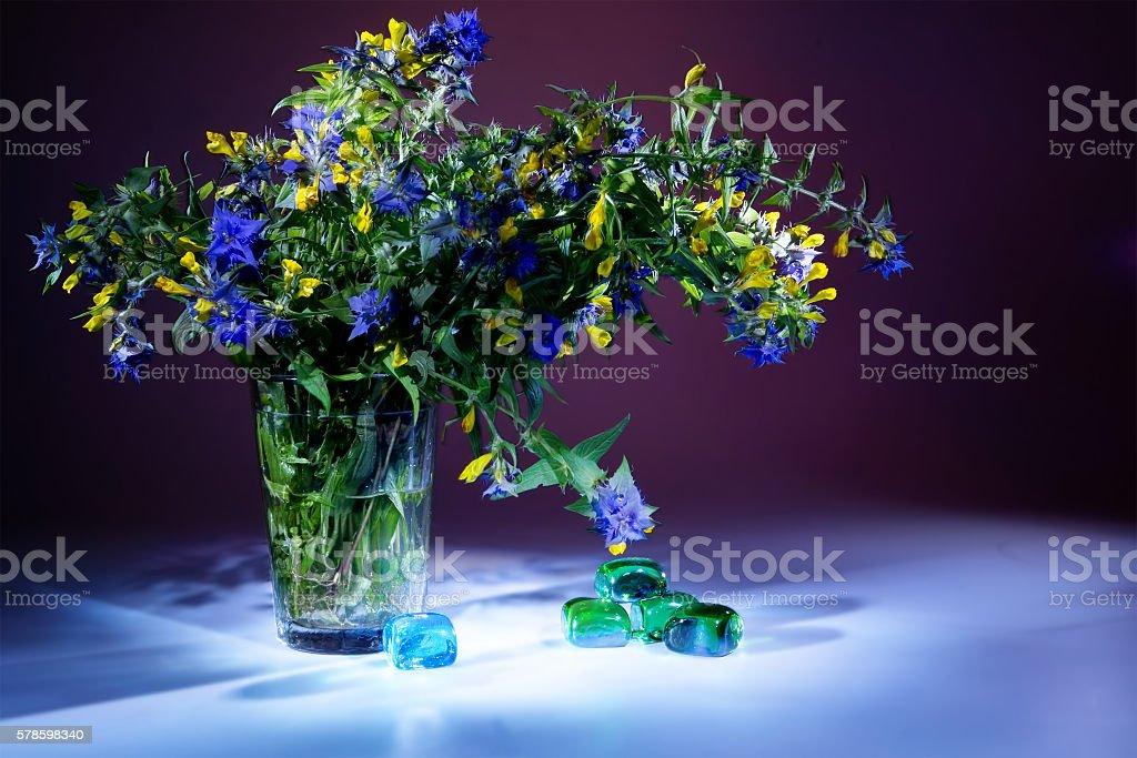 Wild flower Ivan-da-Marya. Light brush stock photo