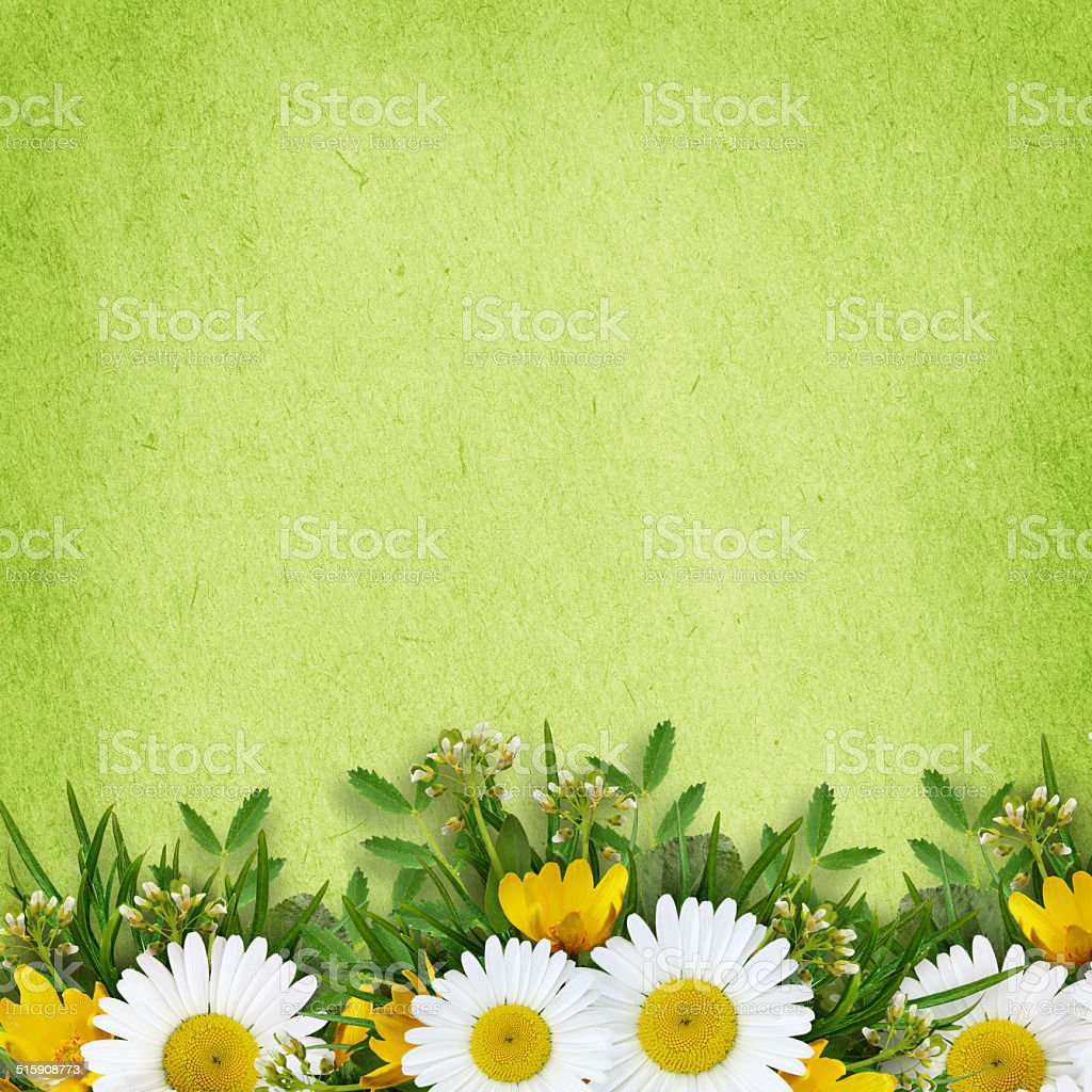Wild flowers arrangement and frame stock photo