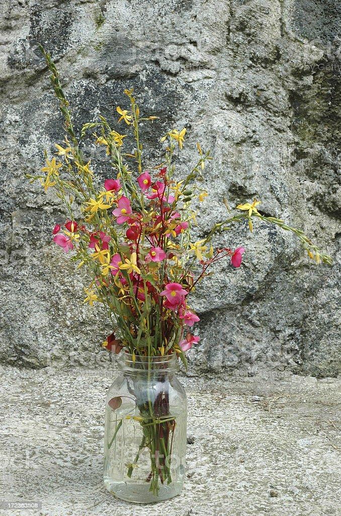 Wild Flowers in Стеклянная банка Стоковые фото Стоковая фотография