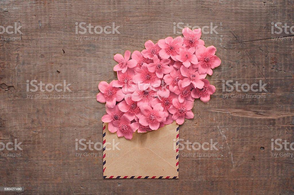 Wild flowers in the vintage envelope stock photo