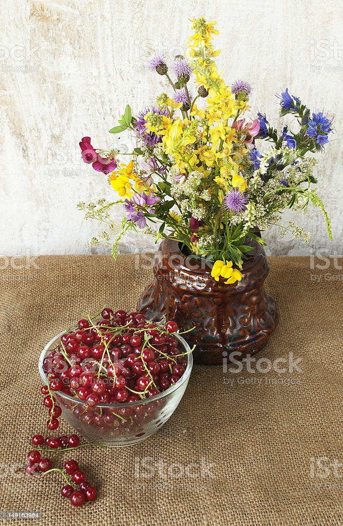wild flowers still life royalty-free stock photo