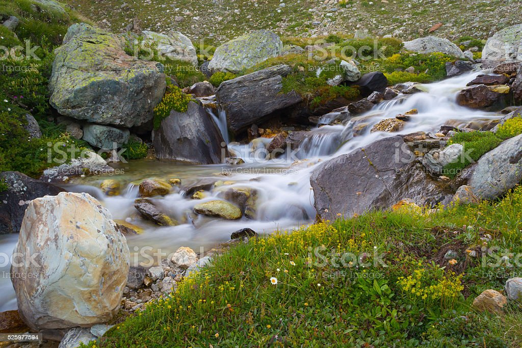 Wild flowing waters in the Alps, long exposure, close up stock photo