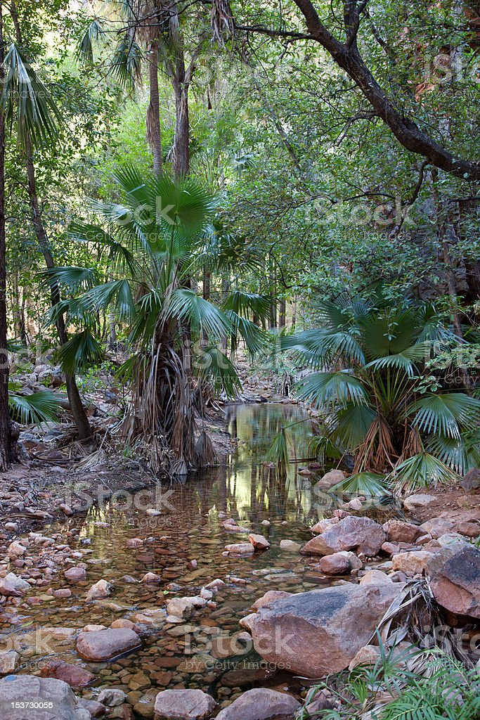 Wild Gorge stock photo