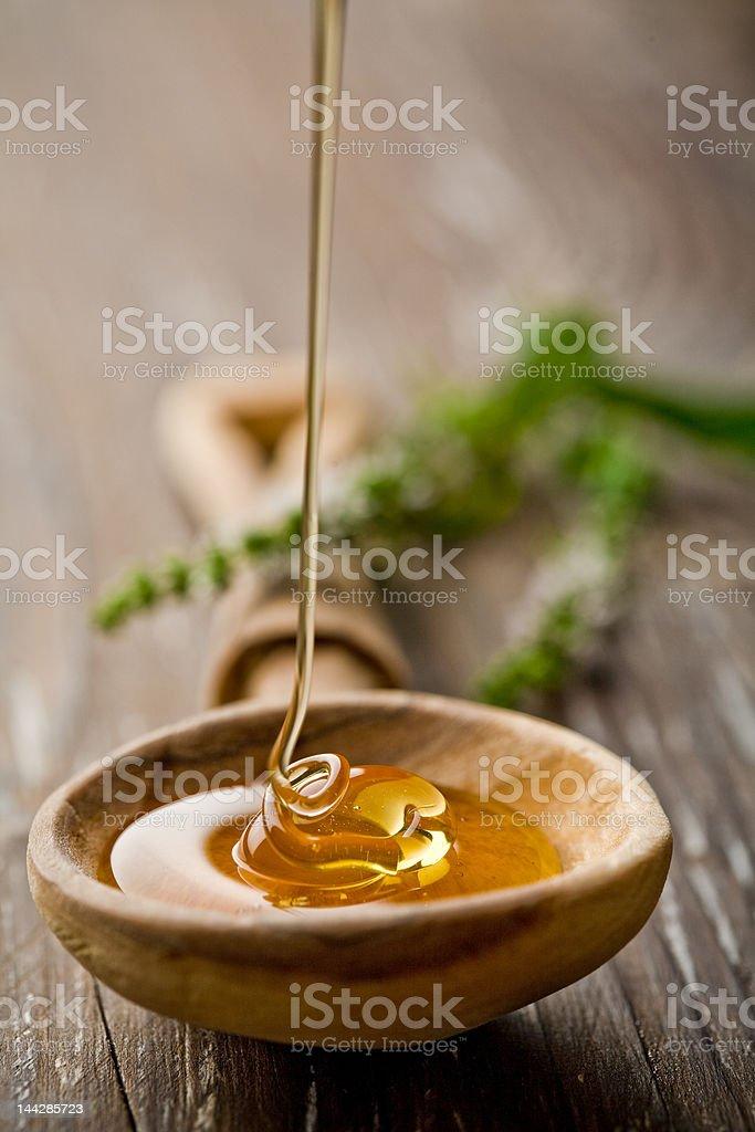wild honey stock photo