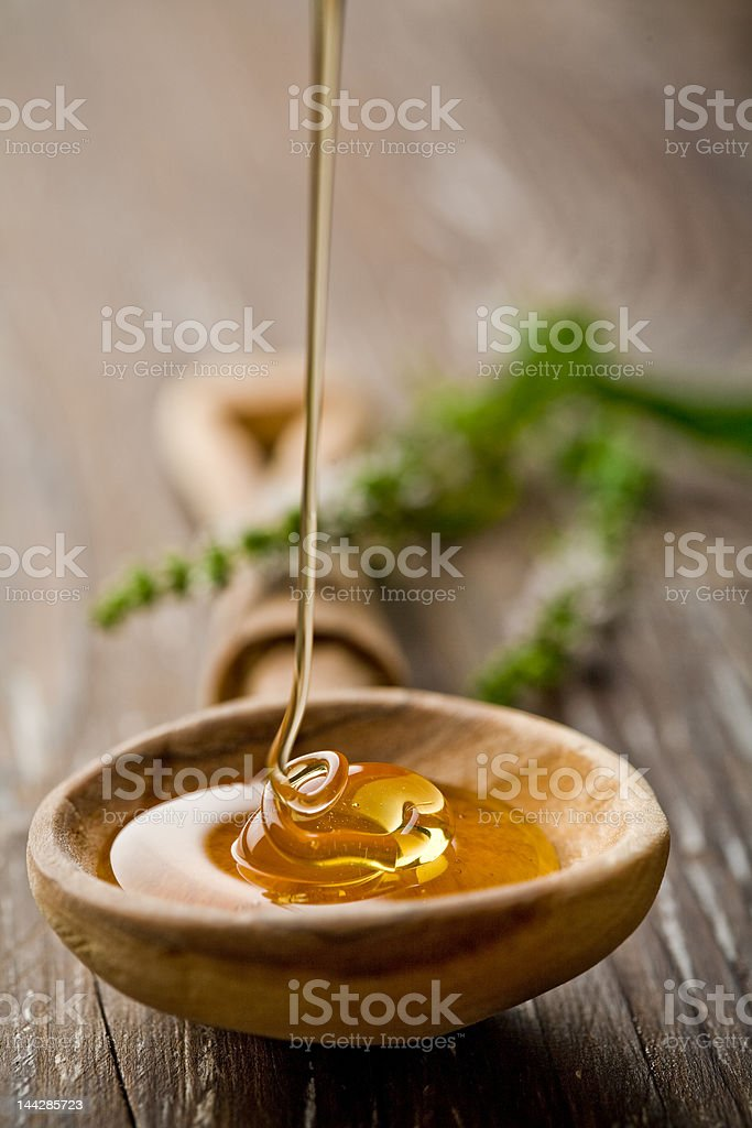 wild honey stock photo