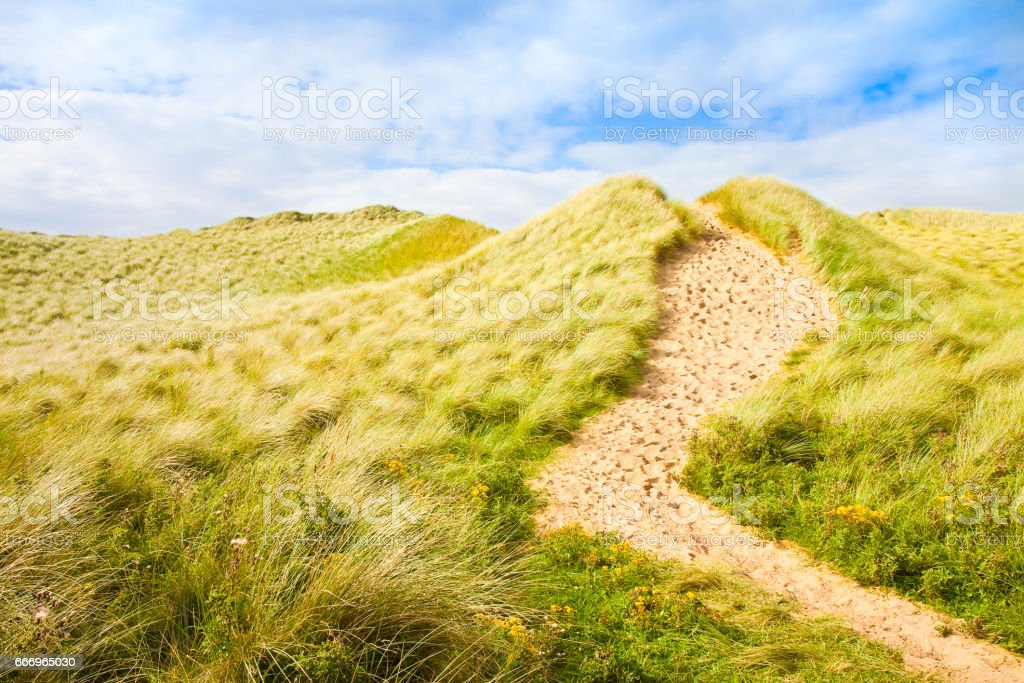 Wild Irish landscape with sand dunes - Nature trail to the beaches and the ocean(Mullagmore - Ireland) stock photo