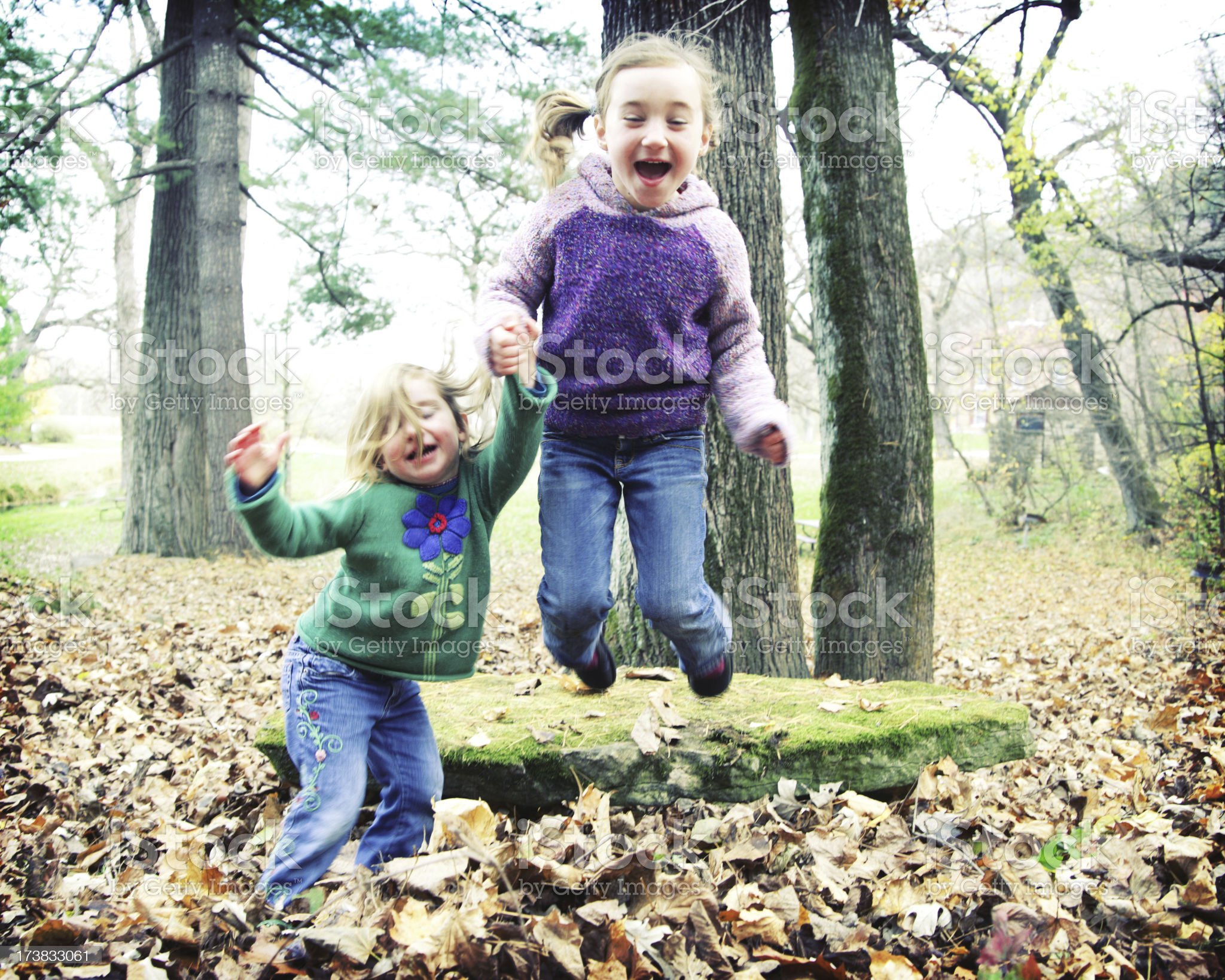 Wild Jumping Sisters royalty-free stock photo