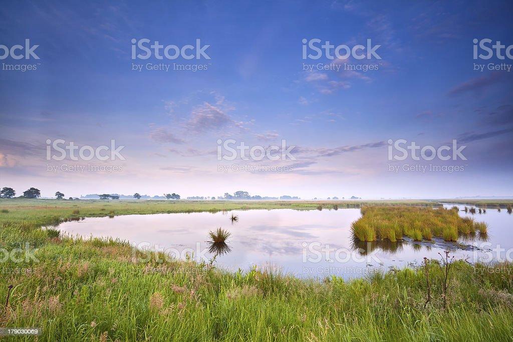 wild lake at sunrise royalty-free stock photo