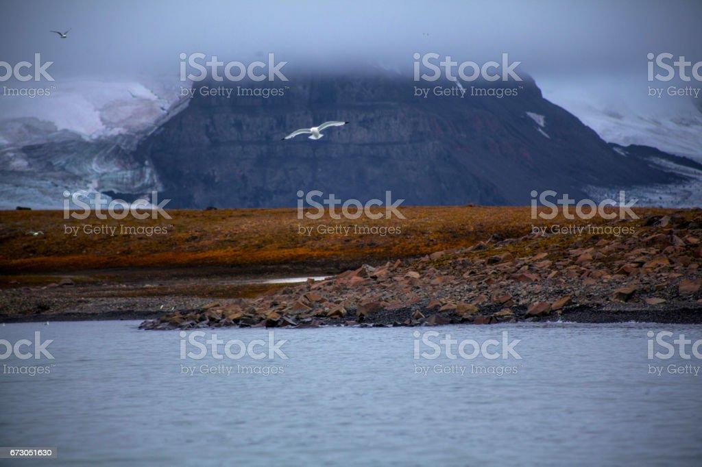 Wild landscape stock photo
