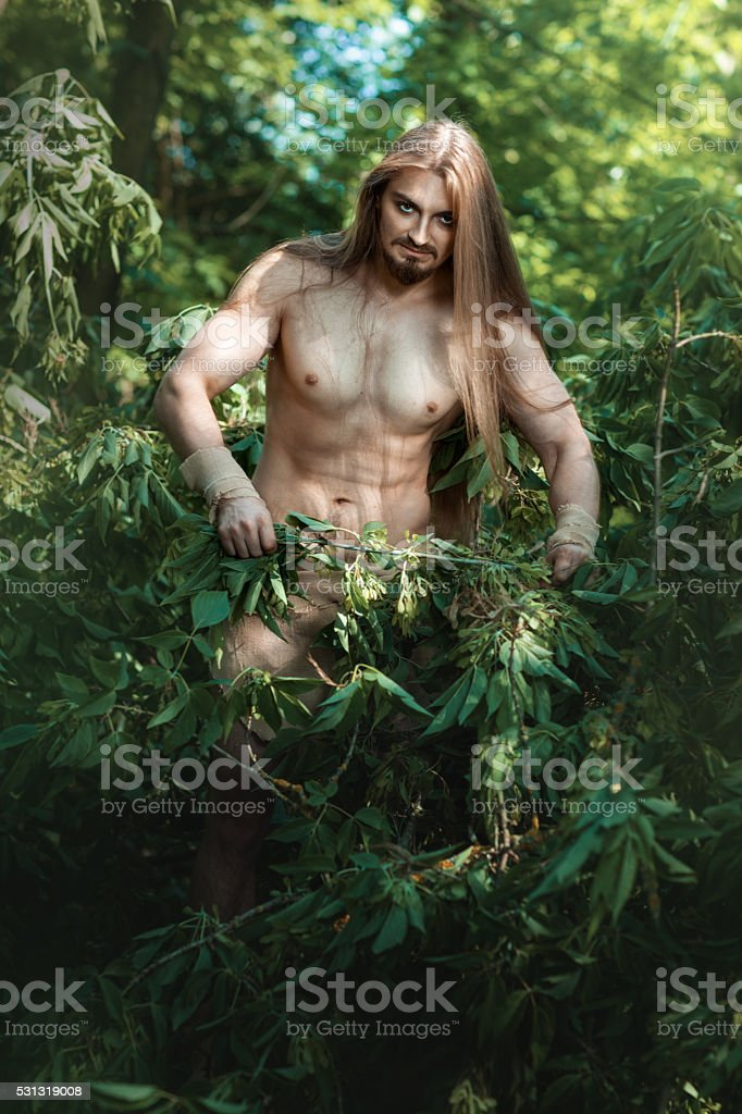 Wild man in the woods. stock photo