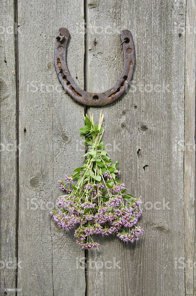 wild marjoram and horseshoe on old wall royalty-free stock photo