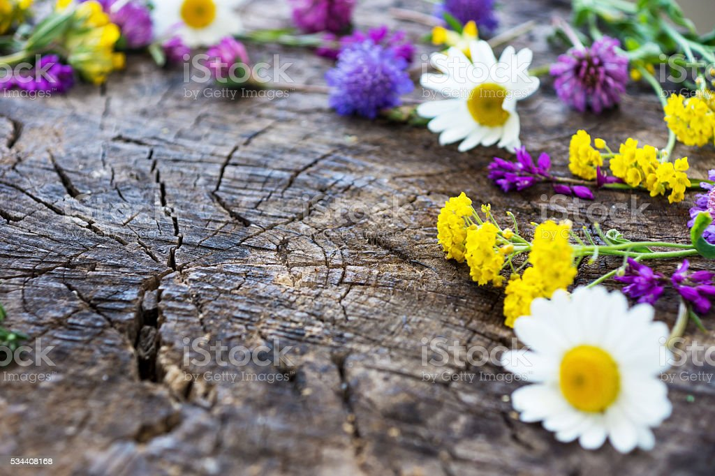 Wild Meadow Flowers on Wooden BackgroundCopy space. Free space f stock photo