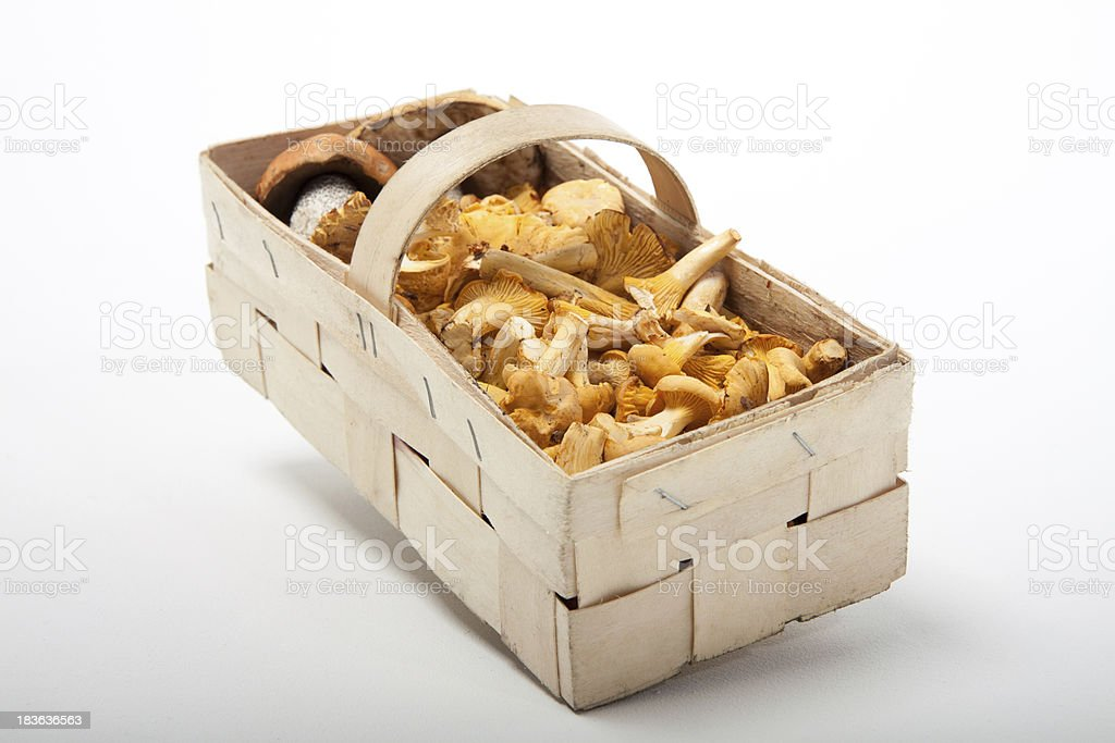 wild mushrooms in a basket royalty-free stock photo