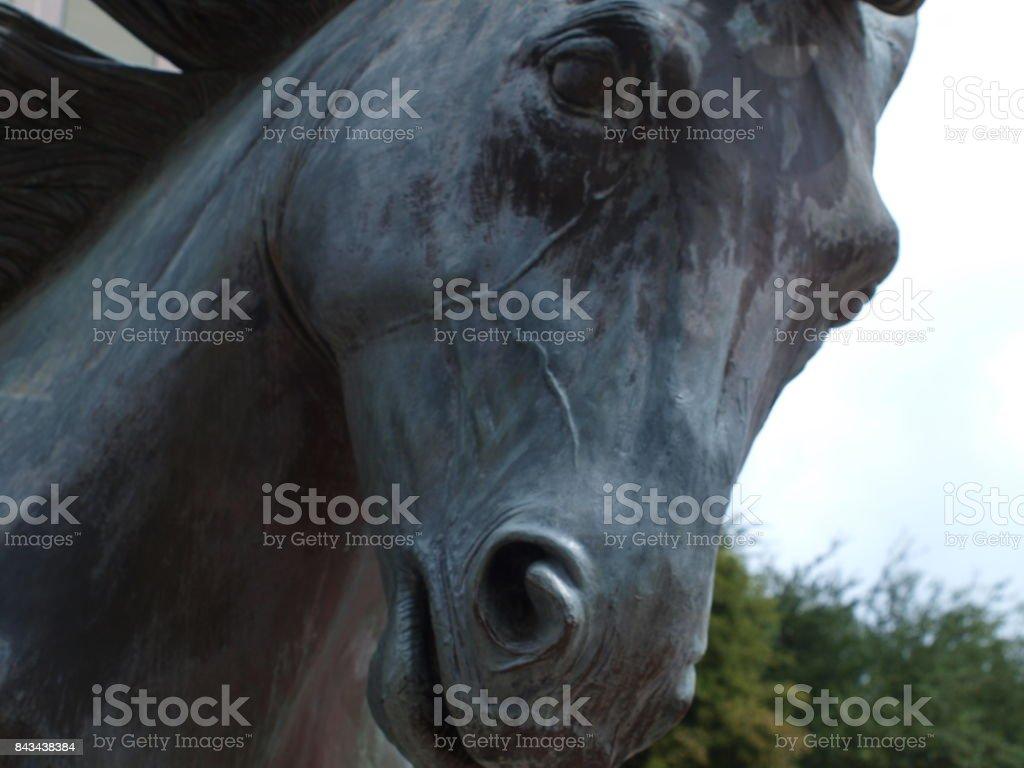 Wild Mustang In Bronze stock photo