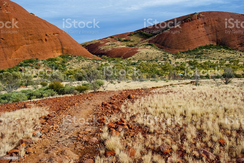 Wild nature in the Australian outback royalty-free stock photo