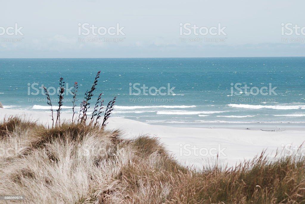 Wild New Zealand West Coast Seascape in Soft Focus stock photo