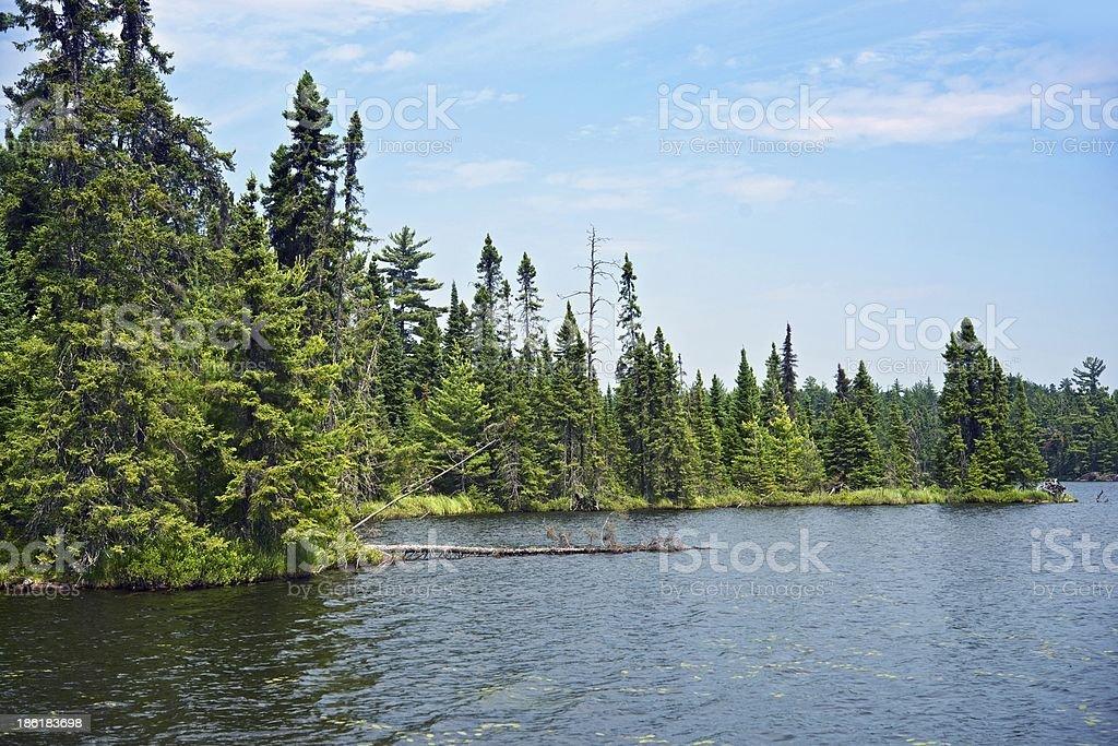Wild Northern Minnesota royalty-free stock photo