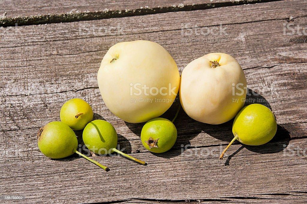 Wild pera frutas y manzanas en el vintage fondo de madera. foto de stock libre de derechos