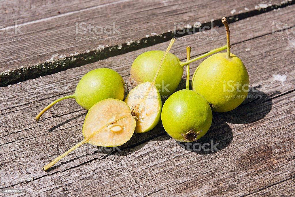 Wild pera frutas, vintage en el fondo de madera. foto de stock libre de derechos