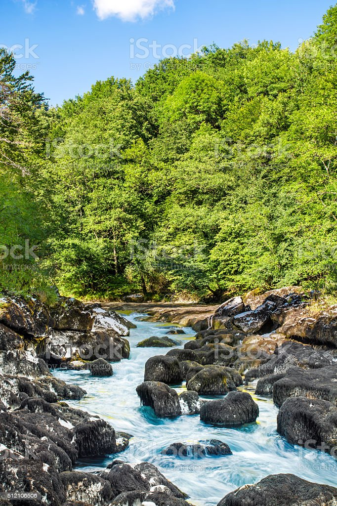Wild rapid riverbed in boulders and rocks in lush forest stock photo