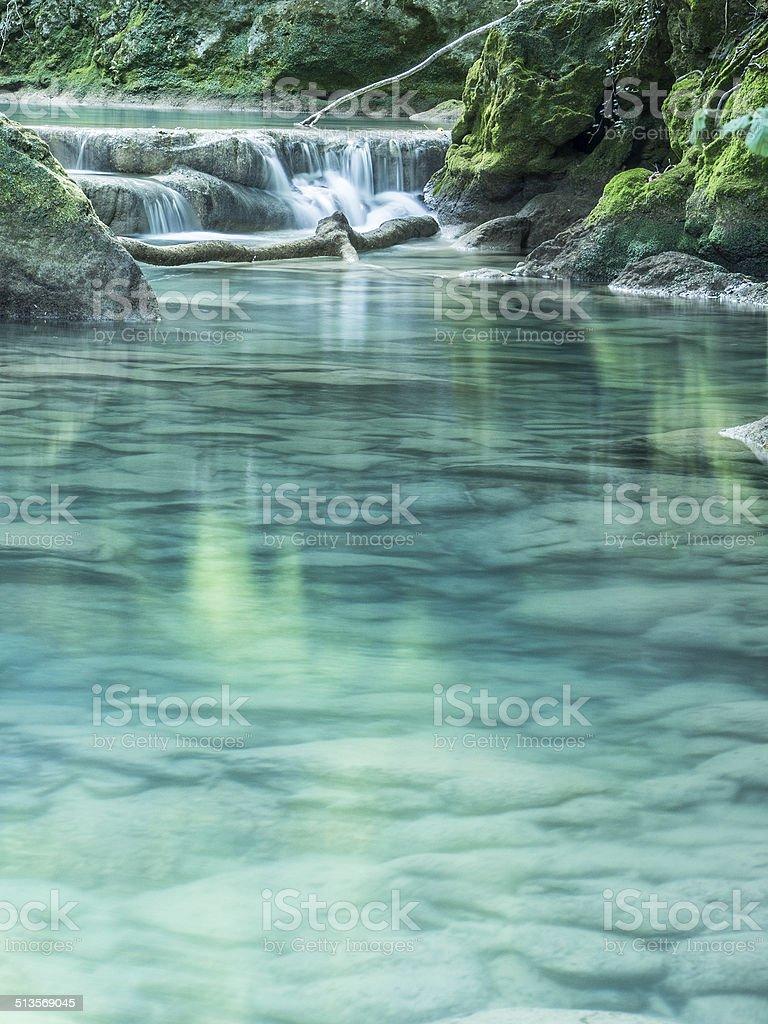 wild river in a jungle stock photo