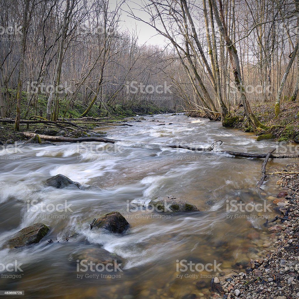 Wild river landscape in spring royalty-free stock photo