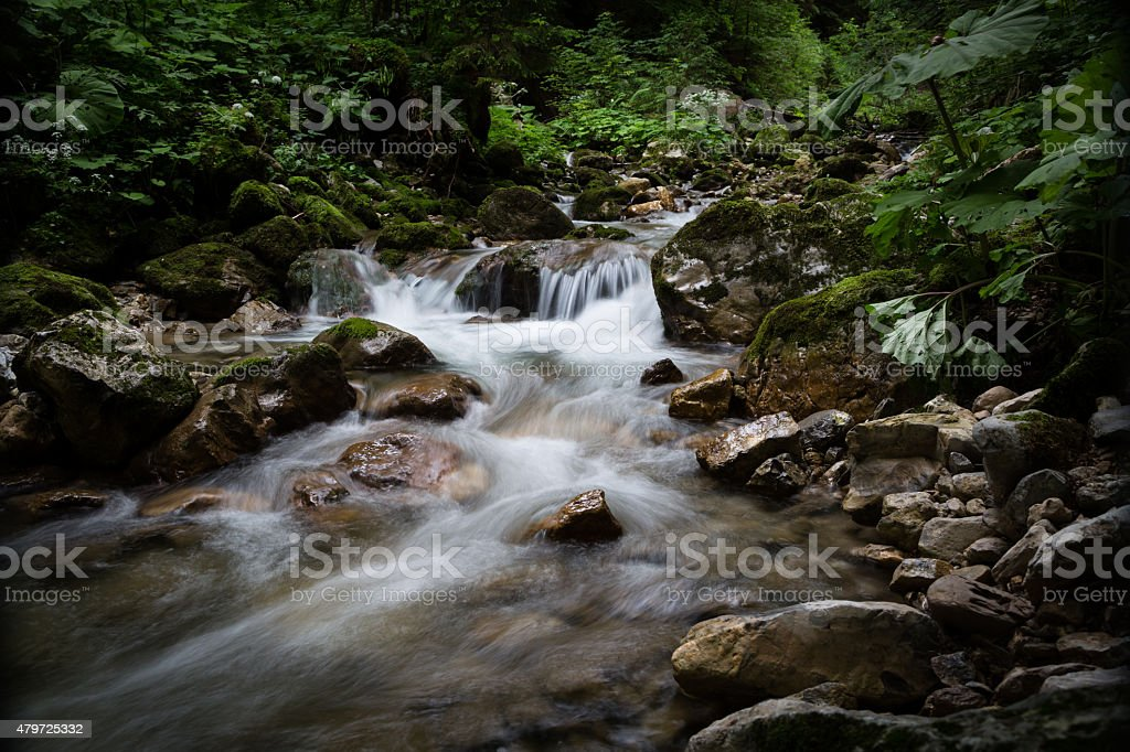 wild romatic river in the mountains stock photo
