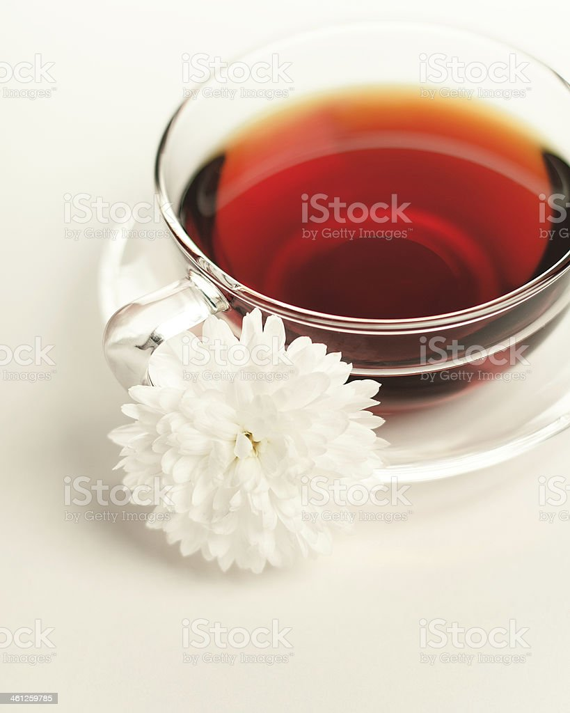 Wild rose tea in the glass cup stock photo
