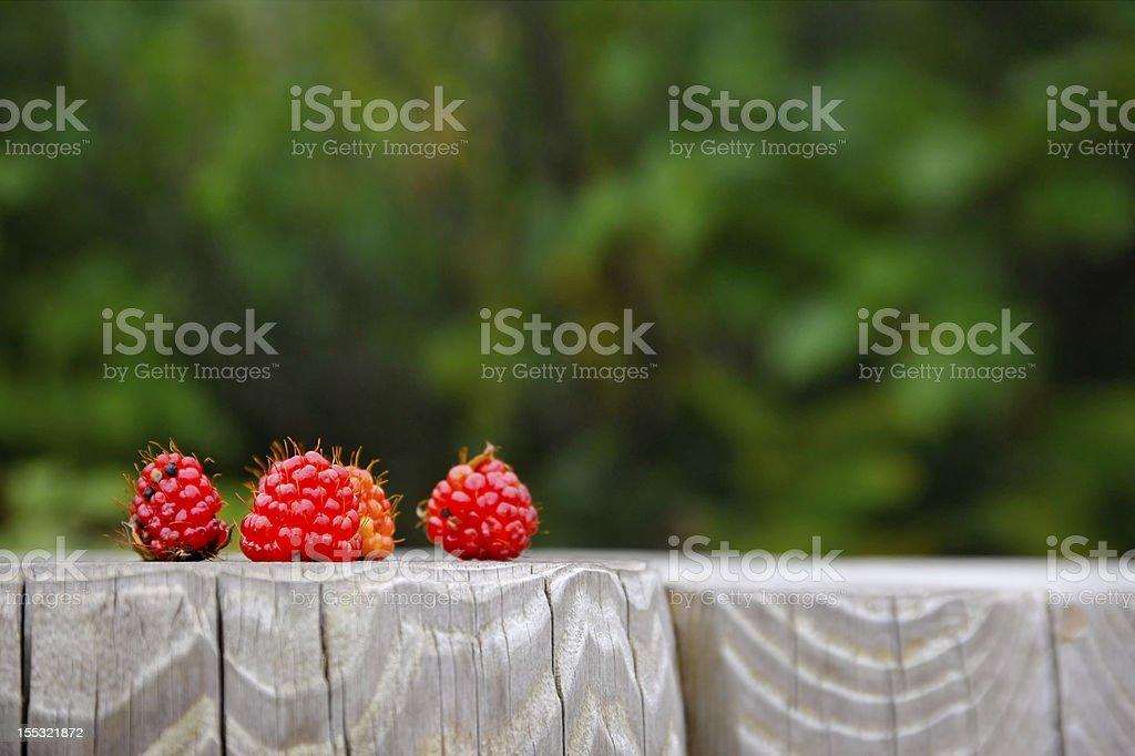 Wild strawberries on wood royalty-free stock photo