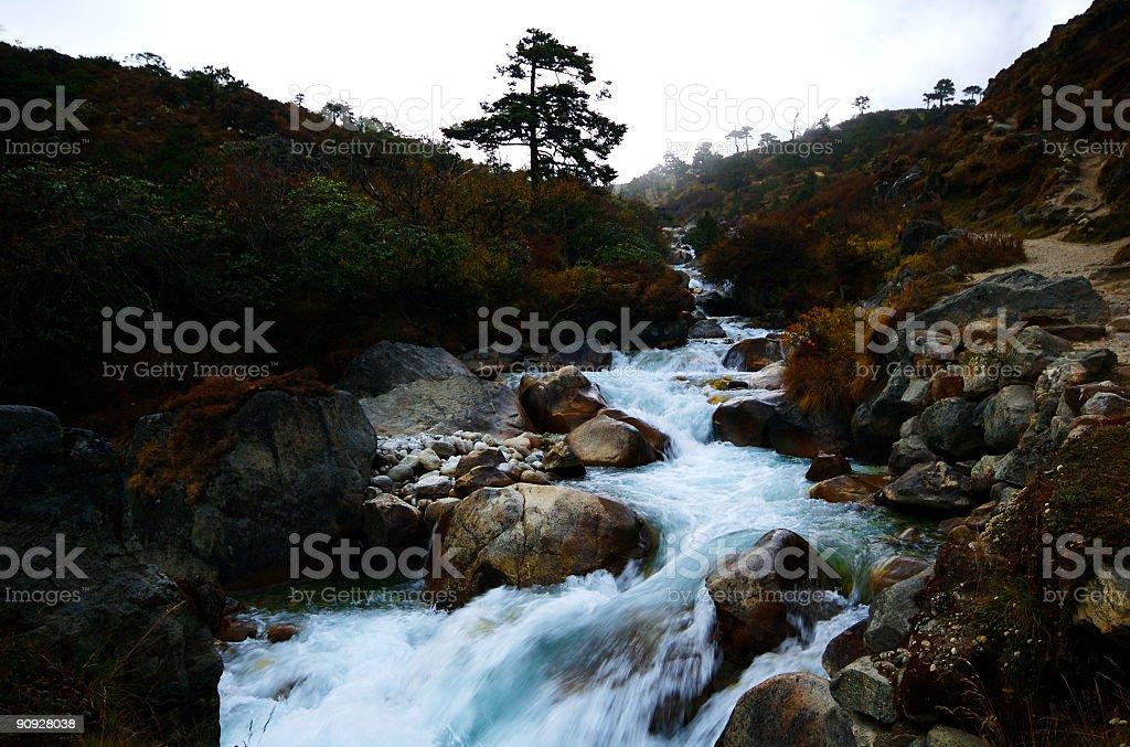 Wild Stream stock photo