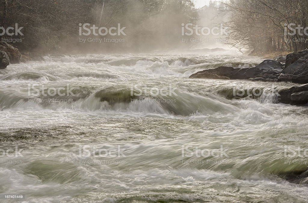 Wild water royalty-free stock photo