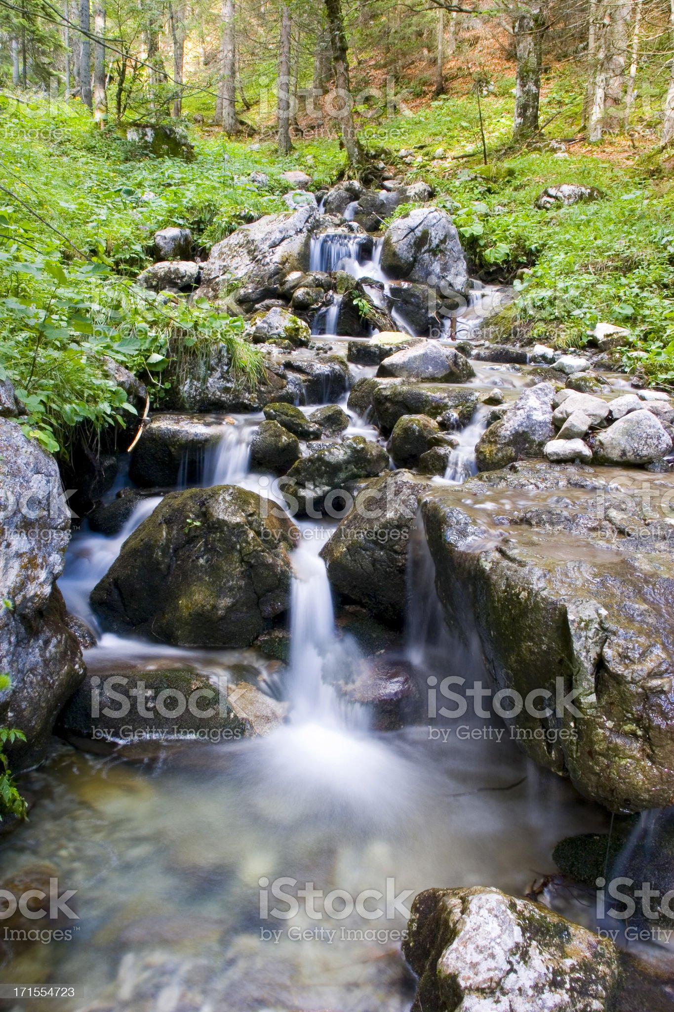 wild waters royalty-free stock photo