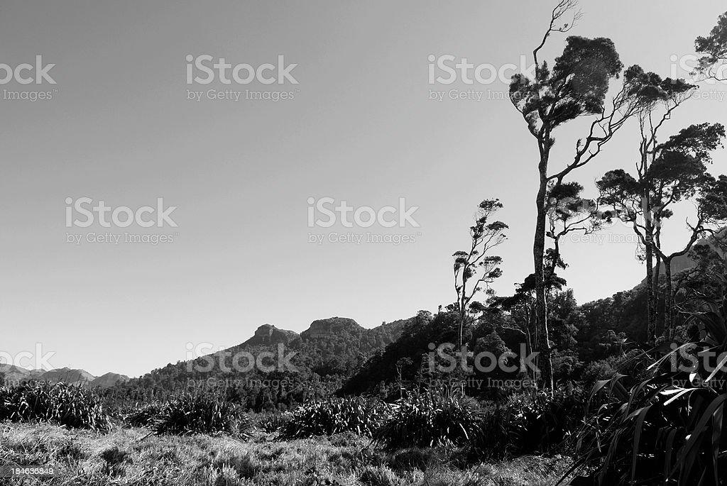 Wild West Coast Landscape stock photo