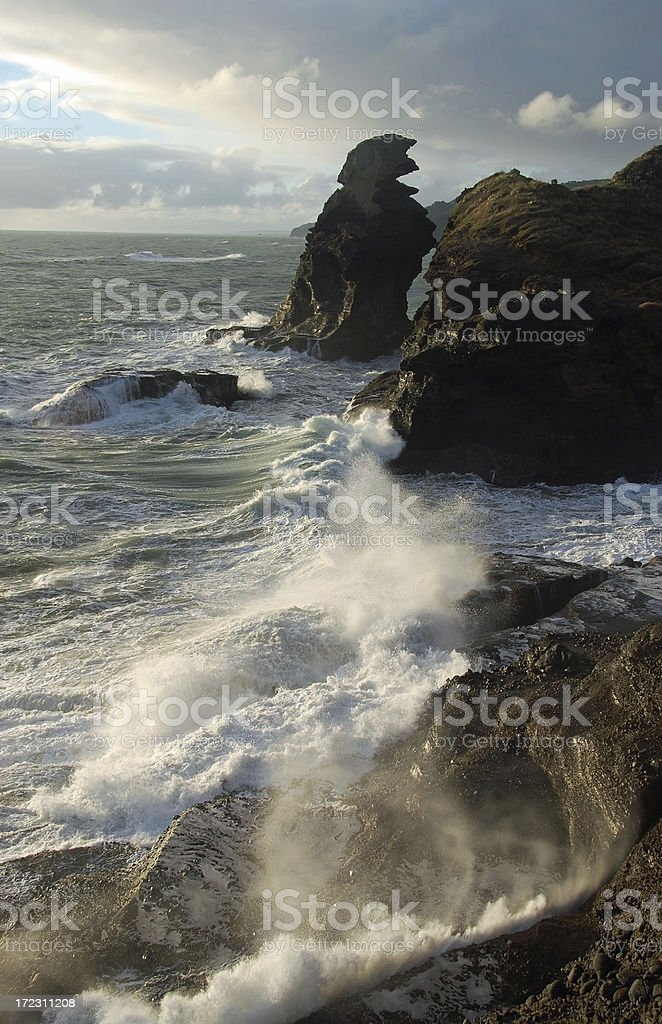 Wild West Coast royalty-free stock photo
