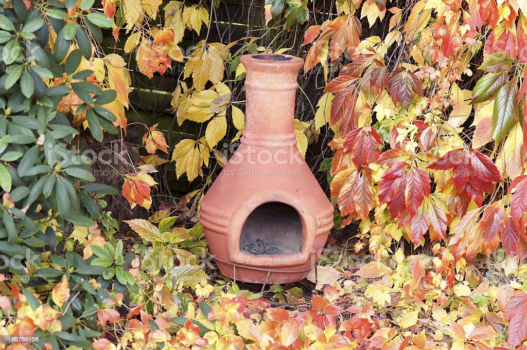 Wild wine in fall coloring royalty-free stock photo