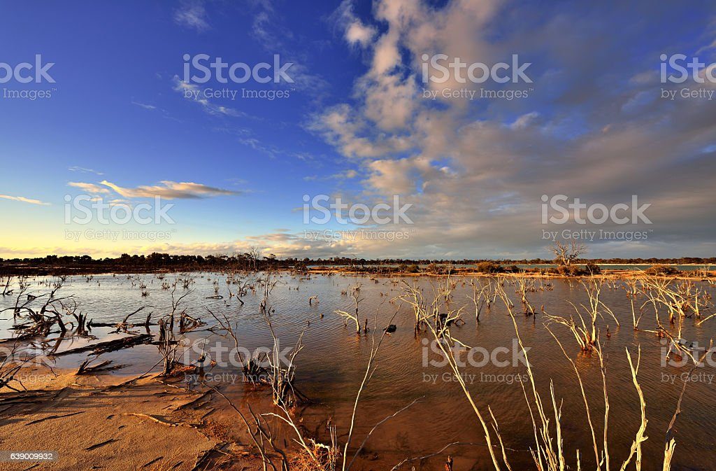 Wilderness Area at Sunset stock photo
