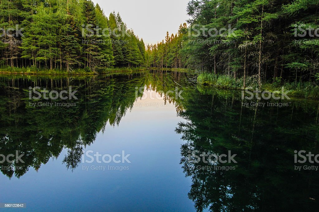 Wilderness Forest River Reflections stock photo