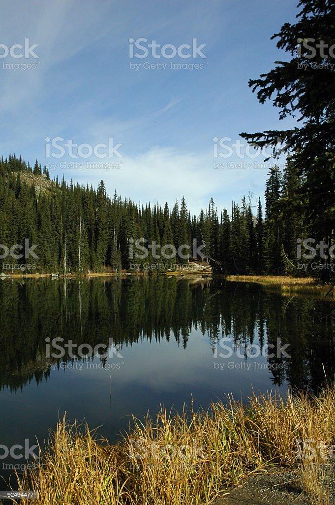 Wilderness Lake 3 royalty-free stock photo