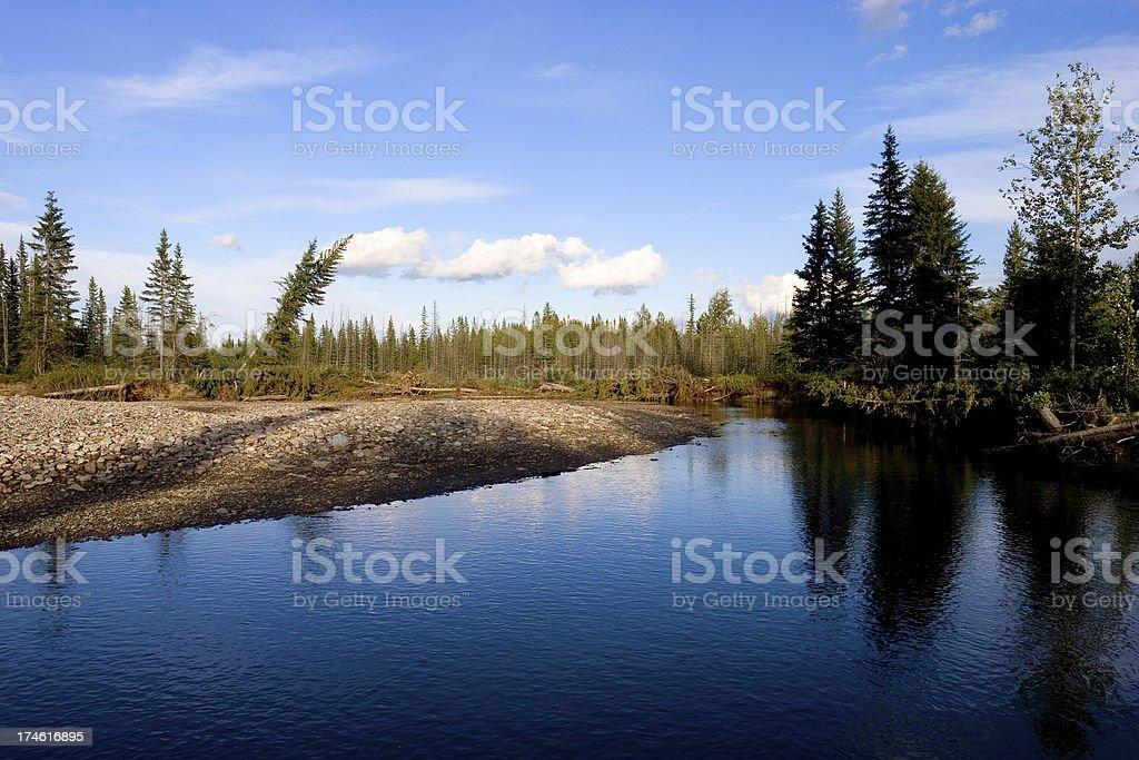 Wilderness # 3 royalty-free stock photo