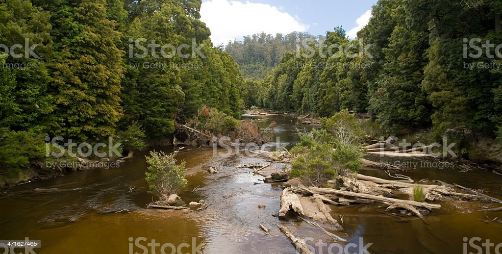 Wilderness royalty-free stock photo
