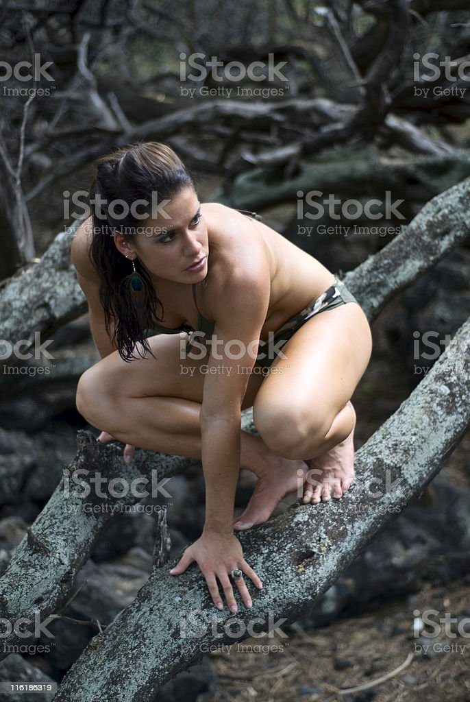 Wilderness Portrait royalty-free stock photo
