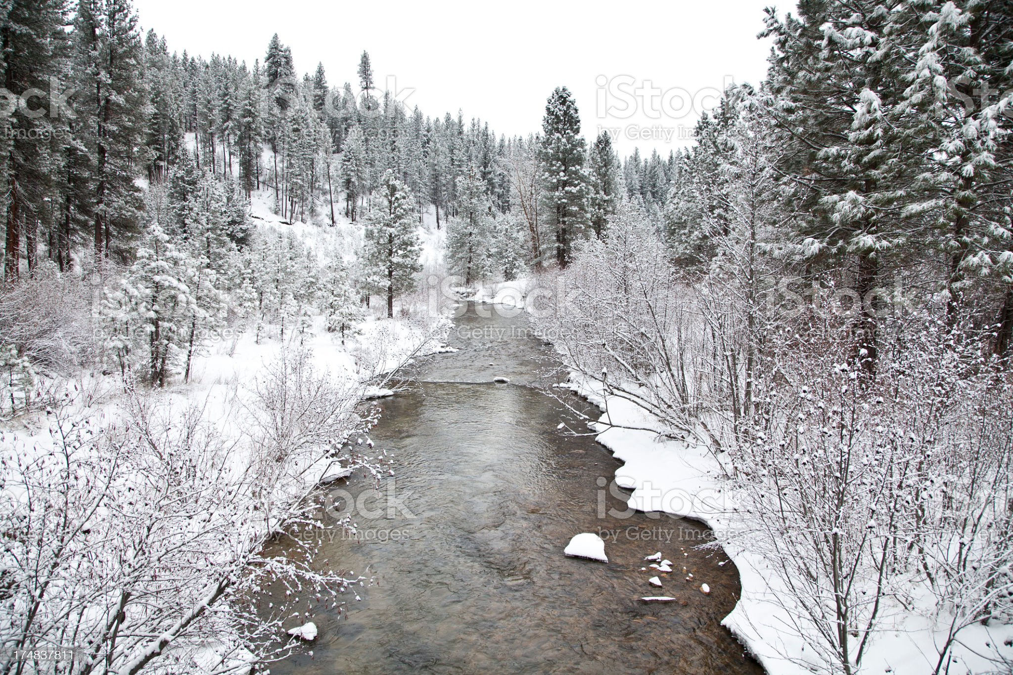 Wilderness River in the Mountains of Idaho royalty-free stock photo