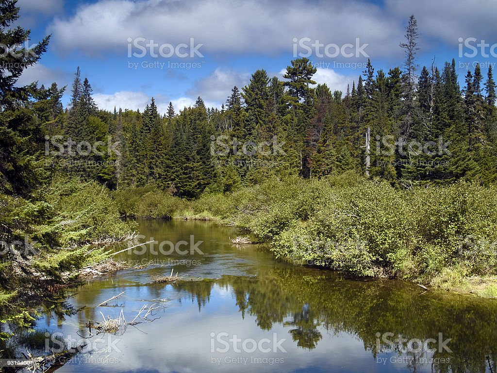 Wilderness River stock photo