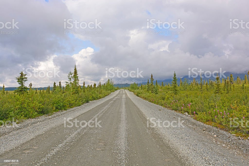 Wilderness Road in the Tiaga stock photo
