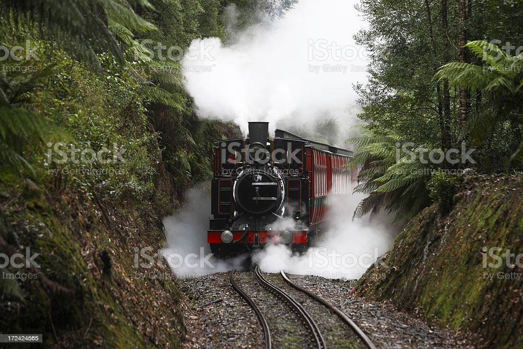 Wilderness steam train on Abt rack railway stock photo