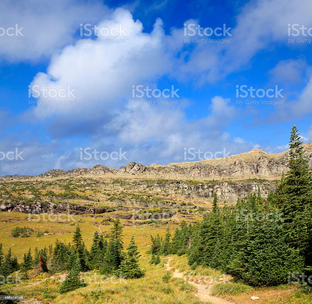 Wilderness Trail in Glacier National Park, Wyoming stock photo