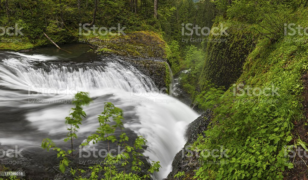 Wilderness waterfall vibrant green forest panorama stock photo