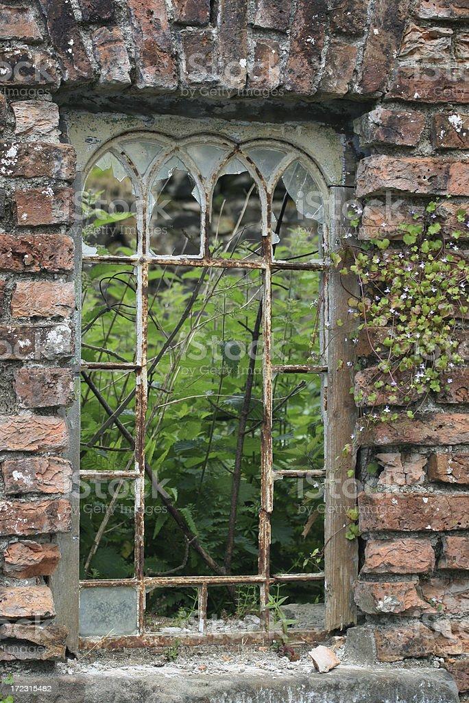 Wilderness window royalty-free stock photo